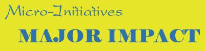 micro-initiatives